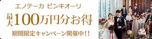 エノテーカ ピンキオーリ 最大100万円分お得 期間限定キャンペーン